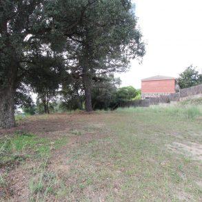 Terreny Sant Cebrià de Vallalta