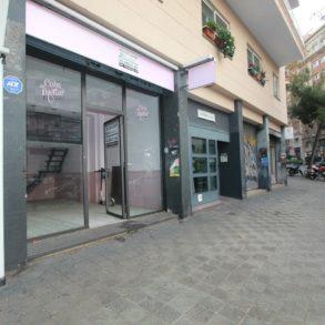 Sardenya 494 local